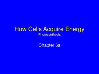 How Cells Acquire Energy Photosynthesis