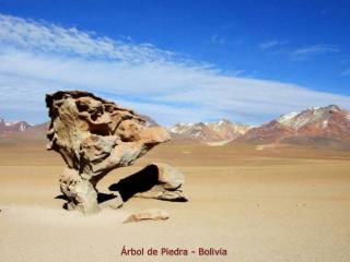 rbol de Piedra - Bolivia