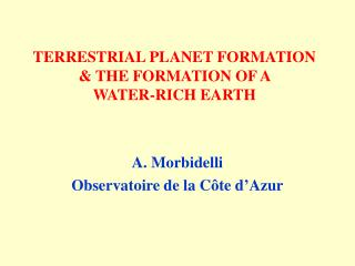 TERRESTRIAL PLANET FORMATION  THE FORMATION OF A  WATER-RICH EARTH