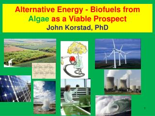 Alternative Energy - Biofuels from Algae as a Viable Prospect               John Korstad, PhD
