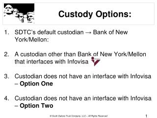 Custody Options: