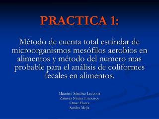 PRACTICA 1: