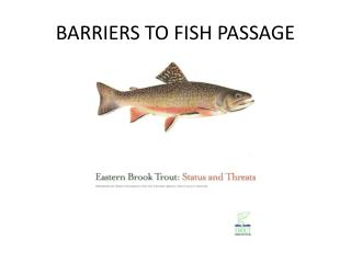 BARRIERS TO FISH PASSAGE