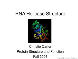 RNA Helicase Structure