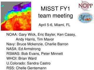 MISST FY1  team meeting