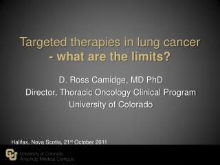 Targeted therapies in lung cancer - what are the limits