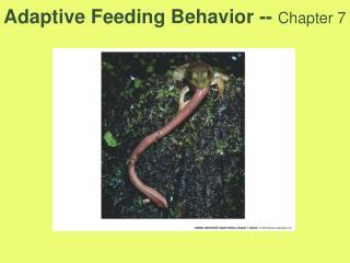 Adaptive Feeding Behavior -- Chapter 7