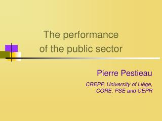 The performance of the public sector