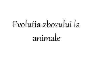 Evolutia zborului la animale