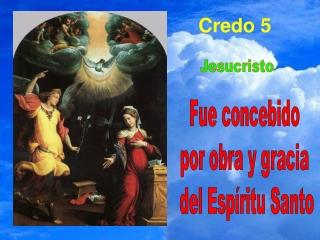 CREDO 5