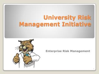 University Risk Management Initiative