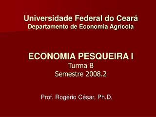 Universidade Federal do Cear  Departamento de Economia Agr cola   ECONOMIA PESQUEIRA I  Turma B Semestre 2008.2