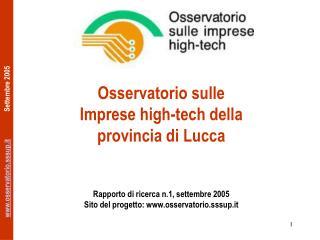 Osservatorio sulle  Imprese high-tech della provincia di Lucca    Rapporto di ricerca n.1, settembre 2005 Sito del proge