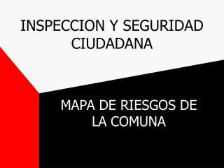 INSPECCION Y SEGURIDAD CIUDADANA