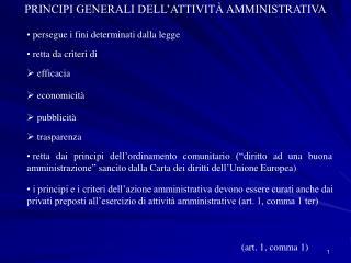 PRINCIPI GENERALI DELL ATTIVIT  AMMINISTRATIVA