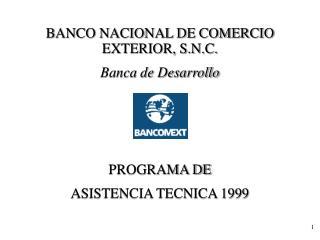 BANCO NACIONAL DE COMERCIO EXTERIOR, S.N.C. Banca de Desarrollo        PROGRAMA DE ASISTENCIA TECNICA 1999
