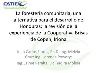 La foresteria comunitaria, una alternativa para el desarrollo de Honduras: la revisi n de la experiencia de la Cooperati