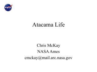 Atacama Life