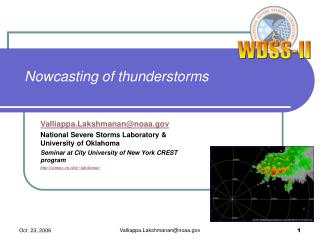 Nowcasting of thunderstorms