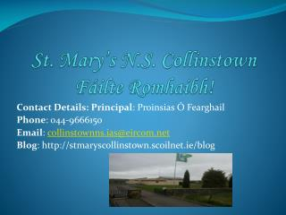 St. Mary s N.S. Collinstown F ilte Romhaibh