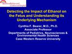 Detecting the Impact of Ethanol on the Fetus and Understanding its Underlying Mechanism