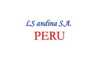 LS andina S.A.          PERU