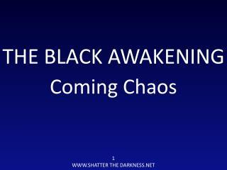 THE BLACK AWAKENING