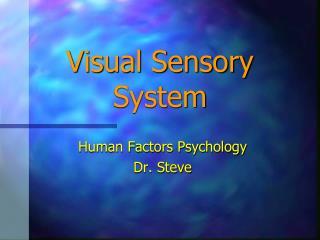 Visual Sensory System