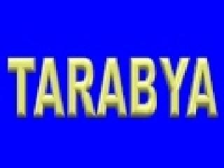 Tarabya ( ELECTROLÜX ) Servisi - 299 15 34 – Tarabya Servis