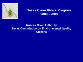 Nueces River Authority Texas Commission on Environmental Quality Citizens