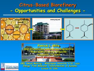 Citrus-Based Biorefinery - Opportunities and Challenges -