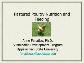 Pastured Poultry Nutrition and Feeding