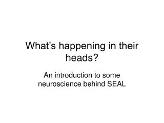 What s happening in their heads