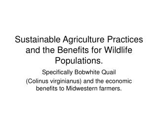 Sustainable Agriculture Practices and the Benefits for Wildlife Populations.