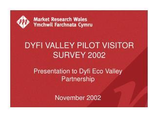DYFI VALLEY PILOT VISITOR SURVEY 2002