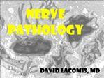 NERVE PATHOLOGY