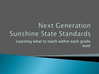 Next Generation  Sunshine State Standards NGSSS