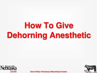 How To Give   Dehorning Anesthetic