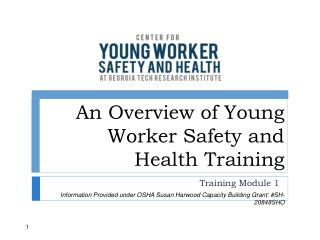 An Overview of Young Worker Safety and Health Training