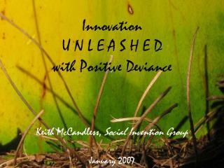 Innovation  U N L E A S H E D with Positive Deviance
