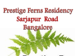 Prestige Group Sarjapur Road Bangalore