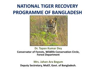 NATIONAL TIGER RECOVERY PROGRAMME OF BANGLADESH
