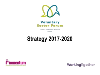Voluntary  Community Sector Representation