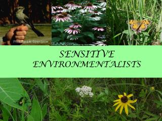 SENSITIVE     ENVIRONMENTALISTS