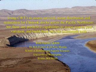Using CWT s to assess survival, ocean distribution and maturation for Chinook stocks across the Pacific Northwest: Are t