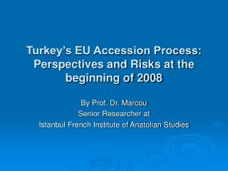 Turkey s EU Accession Process:  Perspectives and Risks at the beginning of 2008