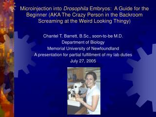 Microinjection into Drosophila Embryos:  A Guide for the Beginner AKA The Crazy Person in the Backroom Screaming at the