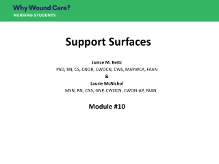 Ulcers and Wound Care in the Elderly