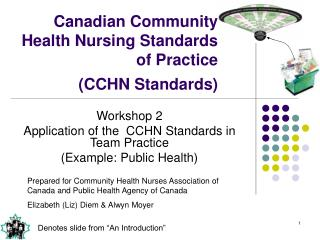 Canadian Community Health Nursing Standards of Practice  CCHN Standards