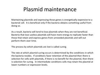 Plasmid maintenance